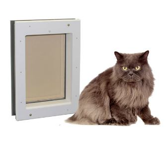 Average cat next to Freedom Pet Pass door-mounted cat door