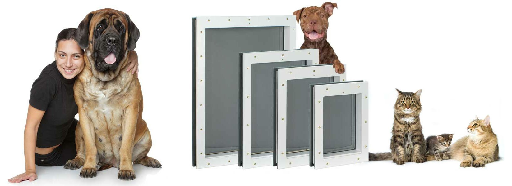 All four sizes of Freedom Pet Pass pet doors with dogs and cats