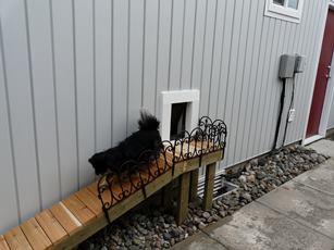 Pet Door Reviews - Canada
